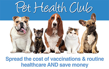 Brookend Vets In Witham - Pet Health Club